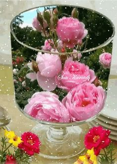 Goblet with rose Beautiful Rose Flowers, Flowers Gif, Beautiful Flowers Wallpapers, Flowers Nature, Love Flowers, My Flower, Roses Gif, Morning Rose, Good Morning Flowers