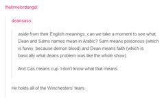 Aside from their English meaning, can we take a moment to see what Dean and Sam's names mean in Arabic? Sam means poisonous (which is funny because demon blood) and Dean means faith (which is basically what Dean's problem was like the whole show). And Cas means cup. I don't know what that means