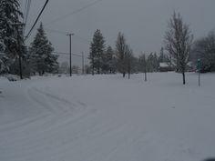Snow covers Burnham Street.