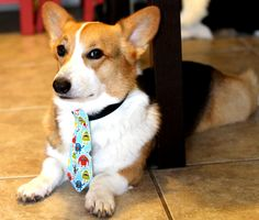 Dog necktie with colorful and playful monster design (Fun for Halloween) by PuppyPawzBoutique on Etsy