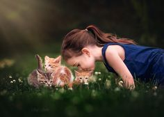 Photograph Kitten medley by Suzy Mead on 500px