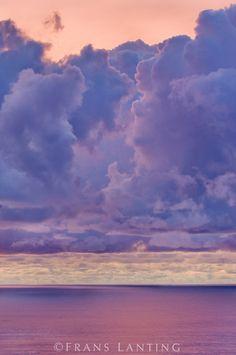 Winter sunset, Monterey Bay, California Copyright © Frans Lanting / Frans Lanting Stock