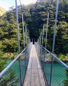 Blue Pools Walk, Mt Aspiring National Park, New Zealand — by Maddie Hayes. New Zealand...aka the land of the swing bridges! Photo taken over the Blue Pools in the South Island. #newzealand #nz...
