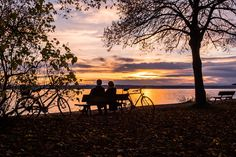 Sunset, Lake Constance, Water, Lake, Sun, Sky, Romantic