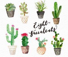 Watercolor succulent clip art collection /Digital by GraphicSafari