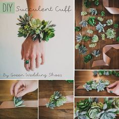 Step 1: Select the succulents and ribbon you'd like to use. Cut your ribbon so that it will fit around your wrist with space to tie the ends together.Step 2: La