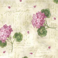 Annie Lapoint - Lady Washington geraniums