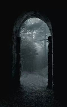 Enchanting path from http://witchywarriorbabe.tumblr.com/