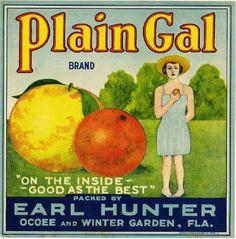 10X10 Ocoee Florida Plain Gal Orange Citrus Fruit Crate Label Art Print | eBay