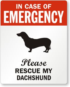 In Case Of Emergency, Please Rescue My Dachshund Label.  I have to add an 's' :)