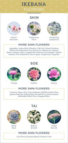 Flowers to use for ikebana