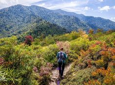 The 10 Most Gorgeous Fall Hikes Around the Country: The Alum Cave Trail (Gatlinburg, Tennessee)