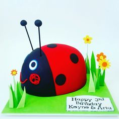 Gaston the ladybird cake ben and holly