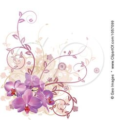 Of Purple Orchid Flowers Vines And Grunge By Geo Images 1057099 Design 429x450 Pixel