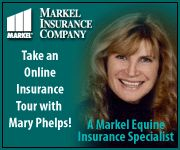 Markel Monday - Frequently Asked Equine Insurance Questions
