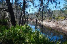 Best Beauty Spots Along the Florida Trail - RTC TrailBlog - Rails-to-Trails Conservancy