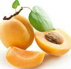 Масло абрикоса издавна используются человечеством для косметических и медицинских целей, оно обладают самым широким с…