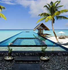Enjoy a day by the pool that expands into the ocean.