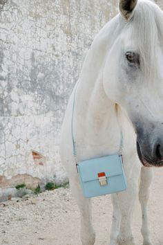 Hippi Grace Lillesand in a light blue color, with one of the most beautiful animals we love.