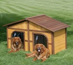 Twin Dog Houses
