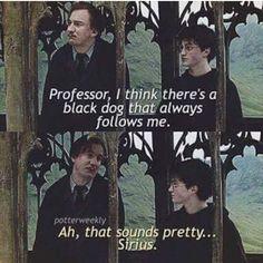 Harry Potter pun