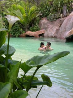 The Lost springs, Geo-thermal pool,  Whangamata, North Island,  NZ