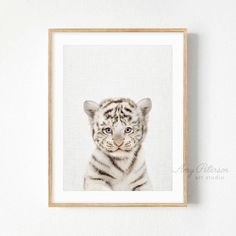 Baby White Tiger Print, Safari Animal Nursery Art, Safari Nursery Decor, Baby Tiger Wall Art by Amy Peterson