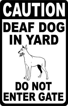 Dog Sign Language, Outside Mount Blinds, Deaf Sign, Badass Quotes, Animal Quotes, The Outsiders, Signs, Rust, Cricut