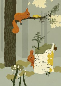 #squirrels and sleeping bird
