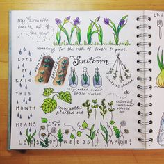allotment for May page 1 . Journal Design, Journal Layout, Journal Pages, Garden Journal, Nature Journal, Journaling, Botanical Illustration, Botanical Drawings, Bullet Journal Inspiration