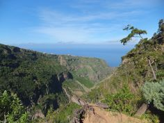 The Tenerife ravine Barranco de Ruiz is wonderful for walking