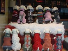 How Much is that Doggy Sweater in the Window? : Paz's New York Minute
