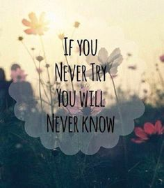 If you never try you will never know.