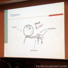 Pre-Med. bio. This would have been so much easier to understand.