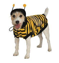 Pet Bumblebee Halloween Costume, Pet Supplies