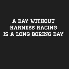 Boring Day, Harness Racing, Horses, Life, Animals, Animales, Animaux, Animal, Animais