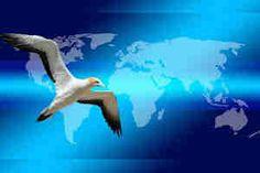 ✅ El Email Marketing es una herramienta de mercadeo muy eficaz para los negocios ✅ su función principal es comunicarse con el público interesado en lo que ofrecemos, consiste en enviar boletines y correos informativos. El éxito depende de la herramienta de email marketing,de la estrategia, de la lista de correos y de