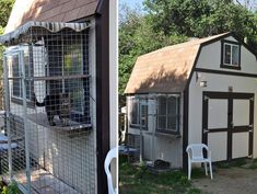 home depot storage sheds buildings | Special Sanctuary for Senior Cats: The Cat Cottage » AdoptaPet.com ...