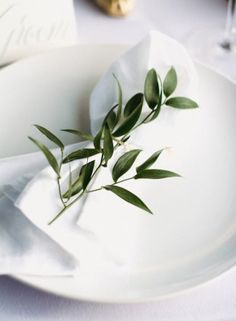 best white wedding bouquets with olive branches - Google Search