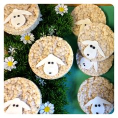 Make sheep chocolate rice cakes for farm! Birthday Treats, Party Treats, Easter Treats, Sunday School Snacks, School Treats, Healthy Treats, Healthy Kids, Timmy Time, Shaun The Sheep