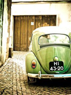 vintage bug!