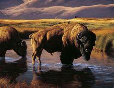 """Reflections"" -mansanarez Wildlife Art by Tom Mansanarez, limited edition prints featuring elk, deer, antelope, moose, cats, cougar, mountain lion, hounds, horses, and bobcats. - Limited Edition Prints"