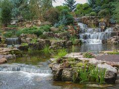Cool Backyard Pond Ideas - Make a manmade water garden.