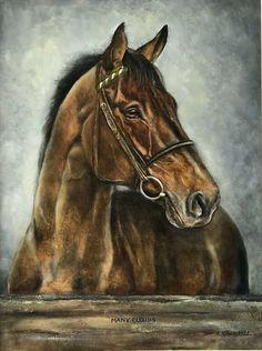 Pretty Horses, Beautiful Horses, Animals Beautiful, Horse Drawings, Animal Drawings, Horse Pictures, Pictures To Paint, Graphite Art, Scratchboard Art