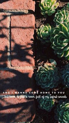 I want to come home to you but I'm not your home anymore and I'm not supposed to still want you