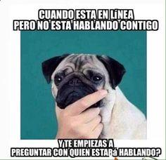 Imagenes de Humor #memes #chistes #chistesmalos #imagenesgraciosas #humor www.megamemeces.c... ➫ http://www.diverint.com/memes-chistosos-chile-tienes