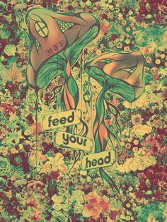 feed your head ~