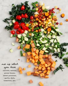 Many-veggie Vegetable Soup