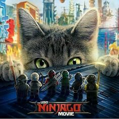 This new poster of The Lego Ninjago Movie, the upcoming CG animated movie directed by Charlie Bean, features the unstoppable beast Meowthra: Ninjago Party, Lego Ninjago Movie, Lego Batman Movie, Ninjago Memes, Streaming Movies, Hd Movies, Movies Online, Hd Streaming, Movie Film
