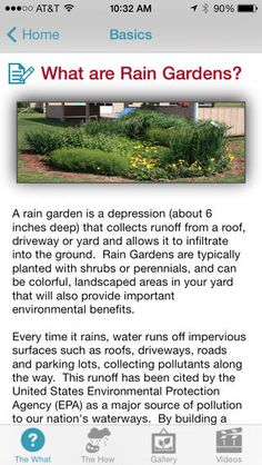 Rainfall and snow in your backyard landscaping – Greenhouse Design Ideas Rain Collection, Rain Barrel, Rainwater Harvesting, Water Conservation, Water Plants, Water Water, Backyard Landscaping, Landscaping Ideas, How To Stay Healthy